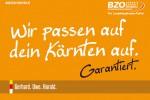 BZÖ Kärnten - Das Originalplakat