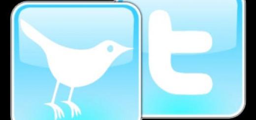 Der zwitschernde Vogel ist das unverkennbare Logo von Twitter