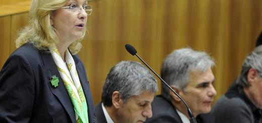 Fekter, Spindelegger & Faymann | Budgetrede 2013 Bild: Leo Hagen/Parlamentsdirektion
